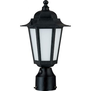 Reviews Mayer 1-Light Lantern Head By Alcott Hill
