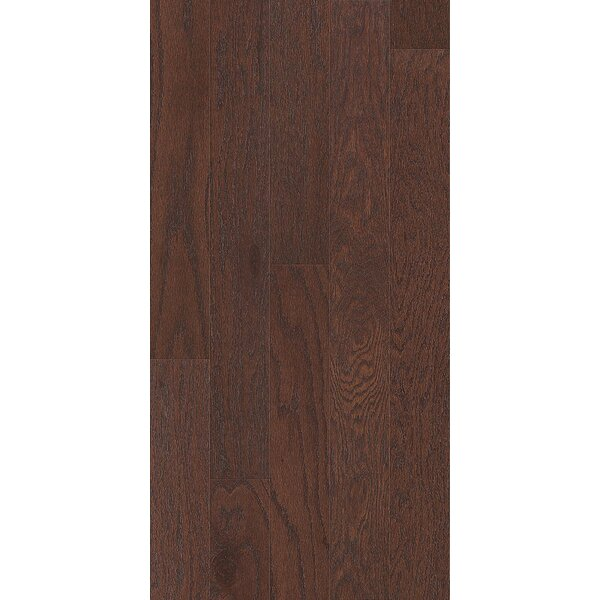 0.38 x 2.75 x 78 Oak Stair Nose in Coffee Bean by Shaw Floors