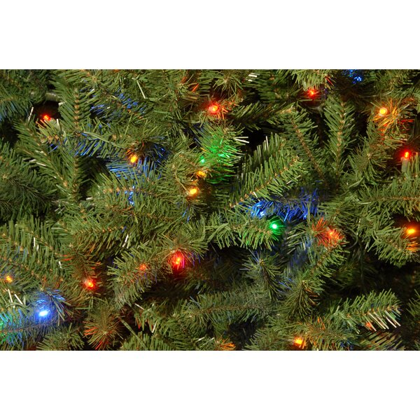Green Spruce Artificial Christmas Tree with LED Colored and White Lights by Three Posts
