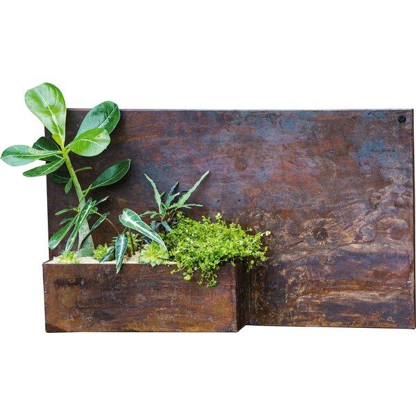 Vita Metal Wall Planter by Evergreen Enterprises, Inc