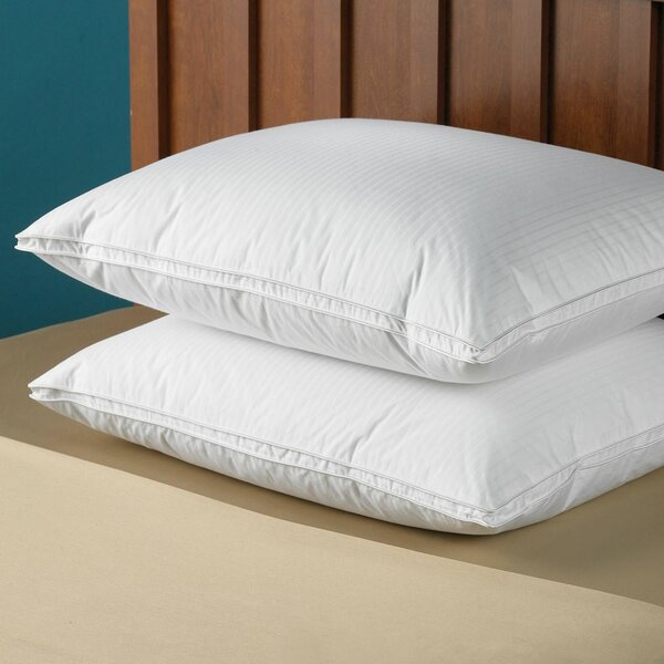 Darius Goose Down Pillow Insert by Alwyn Home