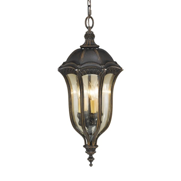 Chesterhill 4-Light Outdoor Hanging Lantern by Darby Home Co