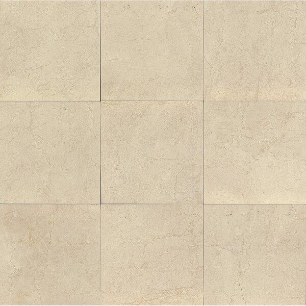 El Dorado 24 x 24 Porcelain Field Tile in Oyster by Grayson Martin