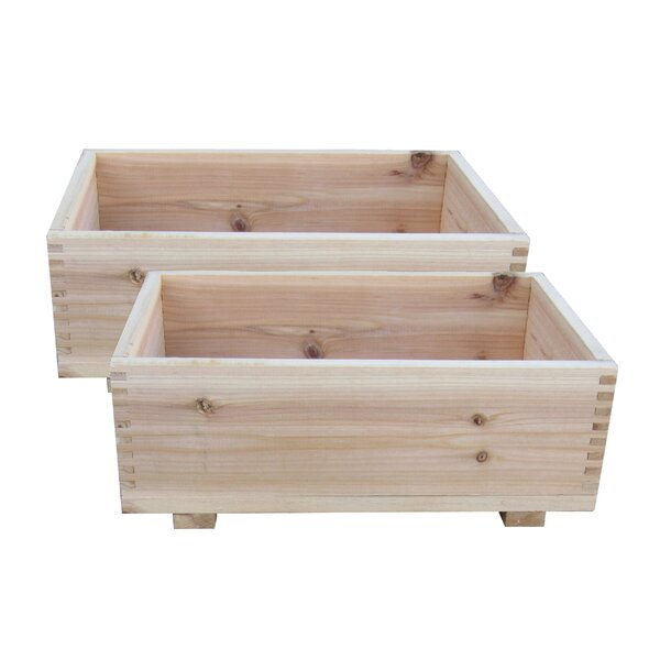 Rech Dual Purpose Cedar Planter Box Set (Set of 2) by Loon Peak
