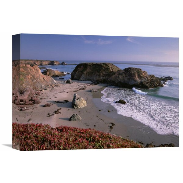 Nature Photographs Beach Near San Simeon Creek with Ice Plant in The Foreground, Big Sur, California Photographic Print on Wrapped Canvas by Global Gallery