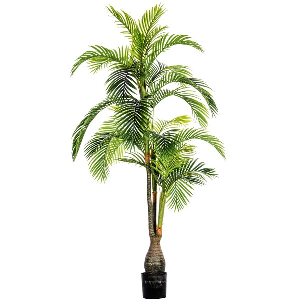 Palm Tree by Bloomsbury Market