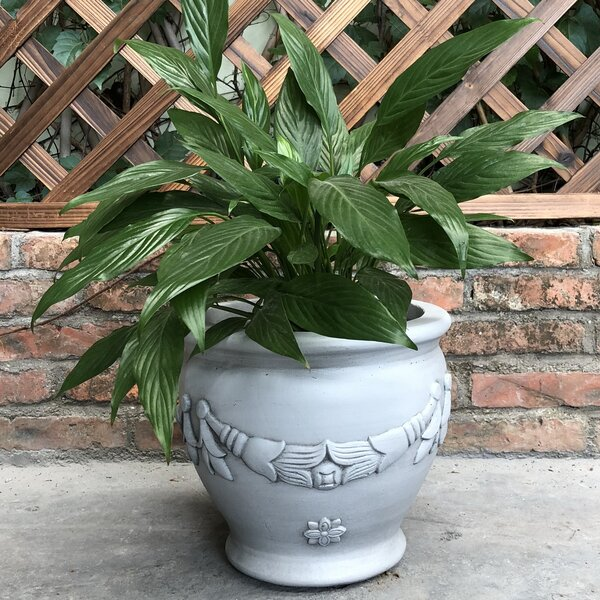 Newenton Garland Jar Pot Planter by Charlton Home