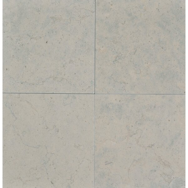 Duvel 12 x 12 Limestone Field Tile in Gray by The Bella Collection