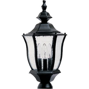 Best Forontenac Cast Outdoor 3-Light Lantern Head By Darby Home Co