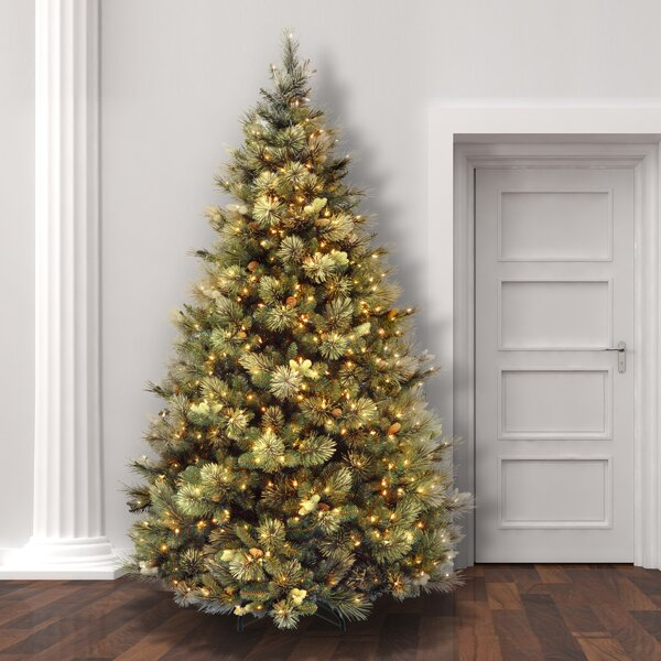 Laurel Foundry Modern Farmhouse Green Pine Trees Artificial Christmas Tree with Clear/White Lights & Reviews | Wayfair