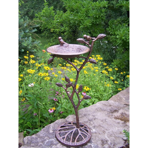 Feathers Meadow Birdbath by Oakland Living