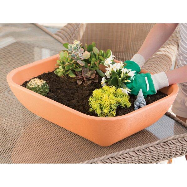 Patio Pod Self-Watering Pot Planter by Novelty