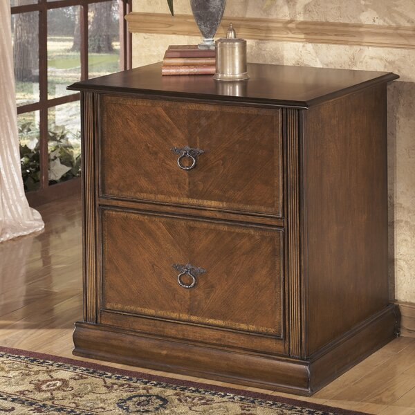 Charlyn 2-Drawer File Cabinet by Darby Home Co
