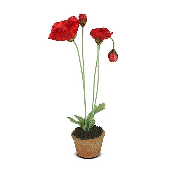 Poppy Floral Arrangement in Pot by House of Hampton