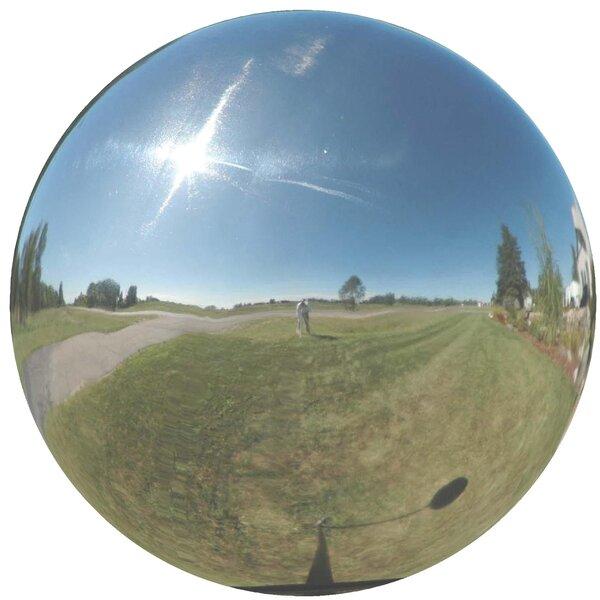 Mirror Gazing Globe by VCS