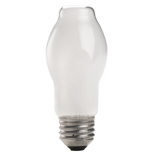 Halogen Light Bulb (Set of 11) by Bulbrite Industries