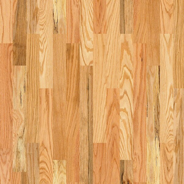 Basinger 4 Solid Red Oak Hardwood Flooring in Wilcox by Shaw Floors