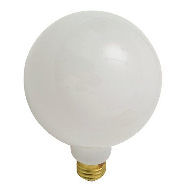 25W Incandescent Light Bulb by Nuevo