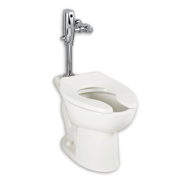 Madera Elongated Toilet Bowl EverClean™ with Touchless Flush by American Standard