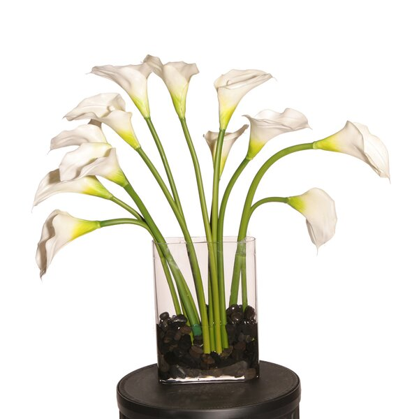 Callas Flower by Latitude Run