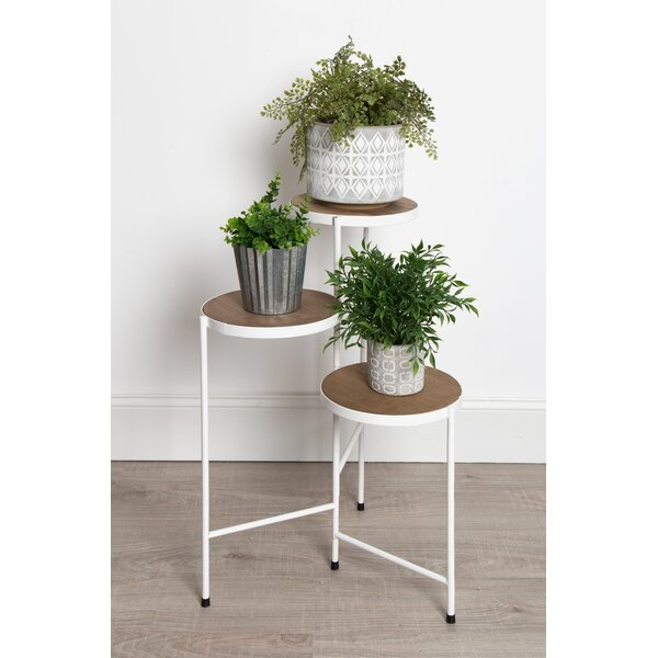 Mcaleer Fields Multi-Tiered Plant Stand by Ivy Bronx