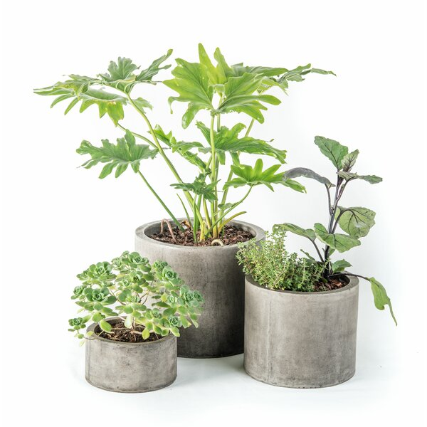 Mateo 3-Piece Composite Pot Planter Set by My Spirit Garden