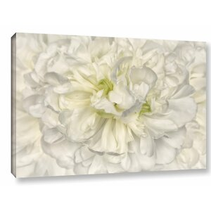 'Pure White Peony' Painting Print on Wrapped Canvas by Willa Arlo Interiors