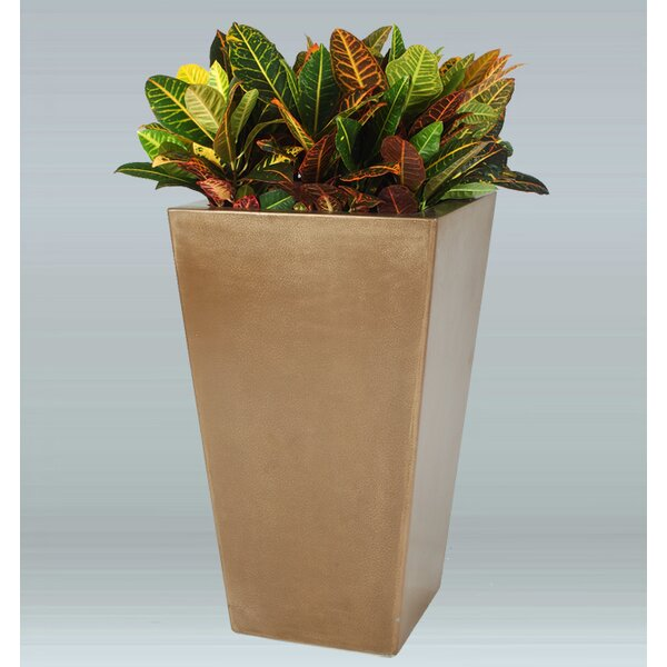 Springdale Plastic Pot Planter by Allied Molded Products