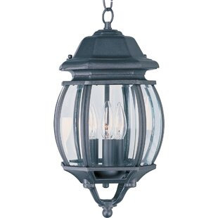 Order Didcot 3 Light Outdoor Hanging Lantern By Charlton Home