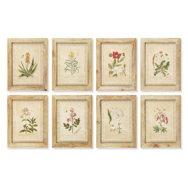 Secret Garden Framed Prints (Set of 8) by Birch Lane™