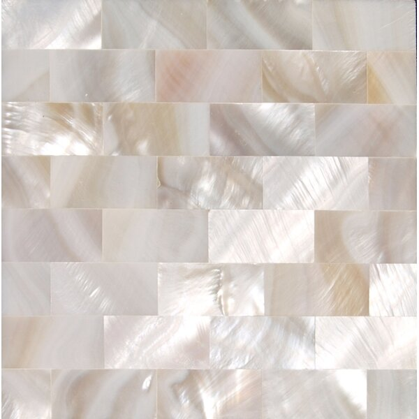 12 x 12 Authentic SeaShell Tile Seamless Brick Mosaic Panel in Veined White Mother of Pearl by Matrix-Z