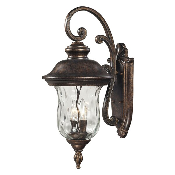 Anna 1-Light Outdoor Wall Lantern by Fleur De Lis Living