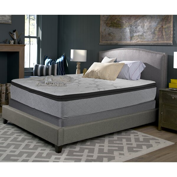 Accomplished 14 Plush Pillowtop Mattress and 9 Box Spring by Sealy