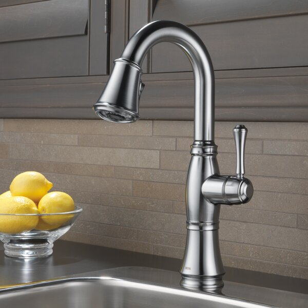 Single Handle Pull-Down Bar / Prep Faucet by Delta