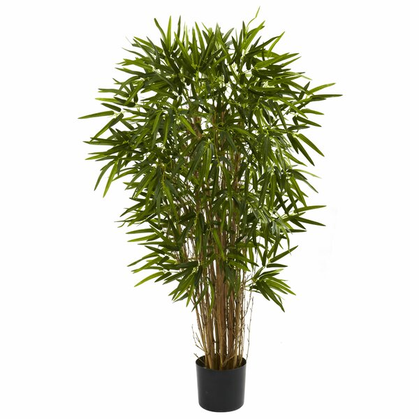 Twiggy Bamboo Tree in Pot by Bay Isle Home