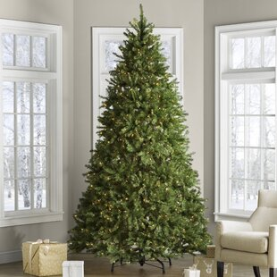 hinged fir trees 9 green fir trees artificial christmas tree with 900 clearwhite lights lights - Farmhouse Christmas Tree Decorations