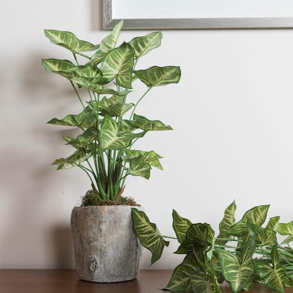 Artificial Desktop Foliage Plant by Bay Isle Home