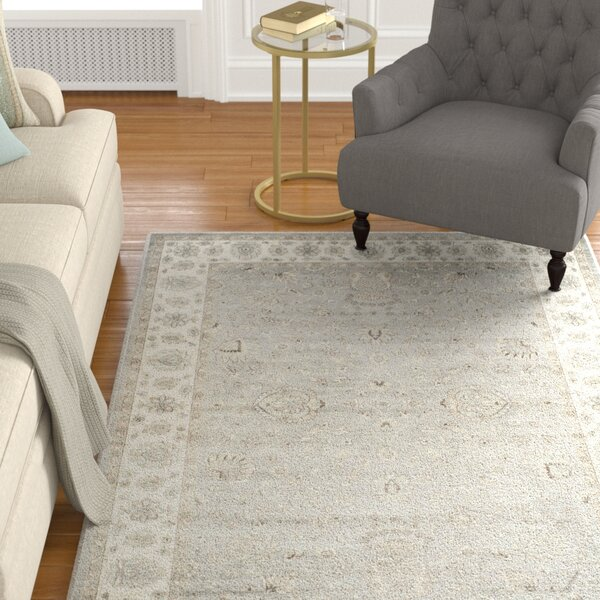 Setser Silver/Ivory Area Rug by Darby Home Co