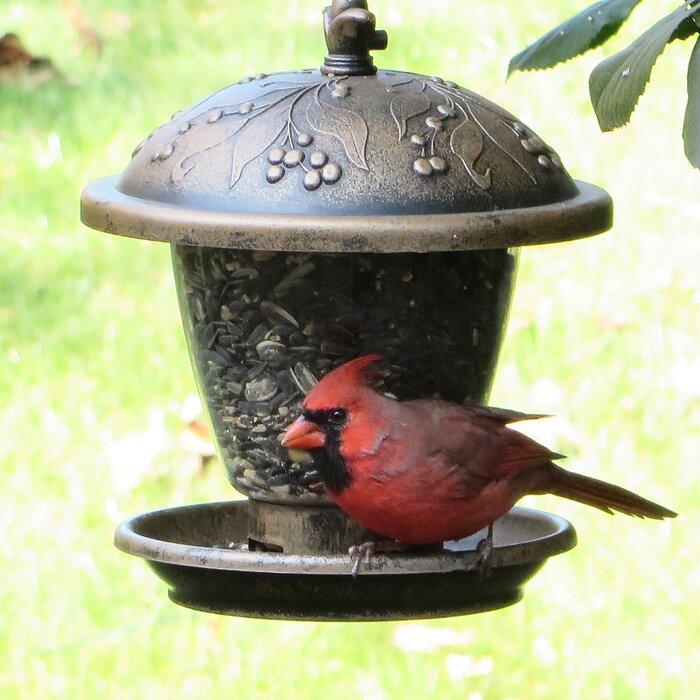 Gilded Chalet Hopper Bird Feeder