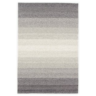 Sarno Hand-Hooked Ombre Blue/Overcast Indoor/Outdoor Area Rug