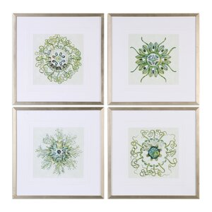 Organic Symbols 4 Piece Framed Graphic Art Set by Darby Home Co