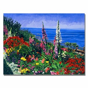 Laguna Niguel Summer by David Lloyd Glover Framed Graphic Art on Wrapped Canvas by Trademark Fine Art