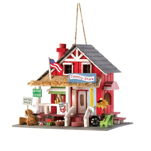 Down Home General Store 9 in x 7 in x 10.5 in Birdhouse by Zingz & Thingz