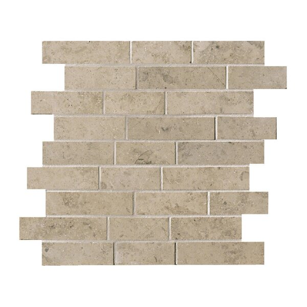 Everstone 2 x 4 Porcelain Mosaic Tile in Ever-Grau by Travis Tile Sales
