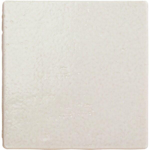 Appaloosa 7 x 7 Porcelain Field Tile in Ibiza by Splashback Tile