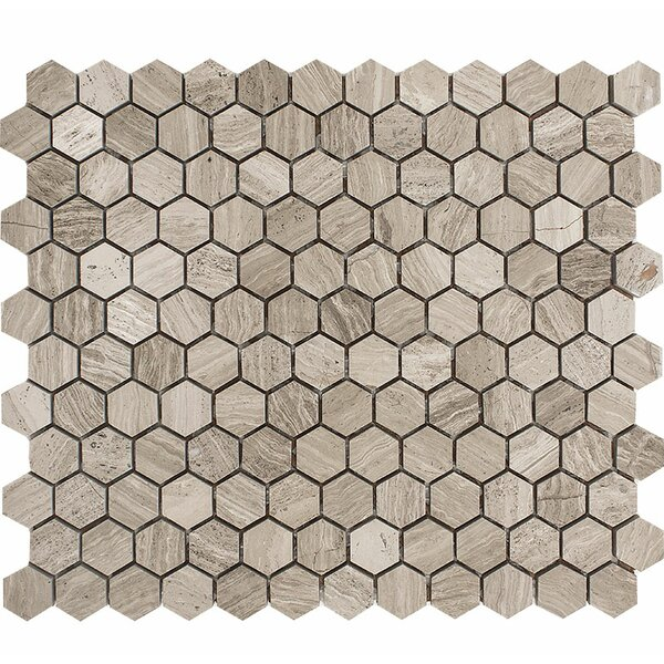 Wood Grain Hexagon 1 x 1 Stone Mosaic Tile in Gray Polished by Parvatile