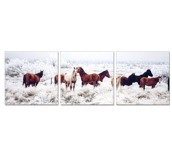 Horses on Plains 3 Piece Photographic Print Set by Furinno