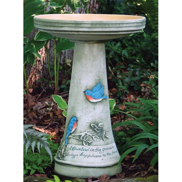 Clay Birdbath by Birds Choice