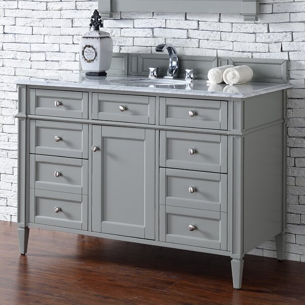 Deleon Traditional 48 Single Urban Gray Bathroom Vanity Set by Darby Home Co