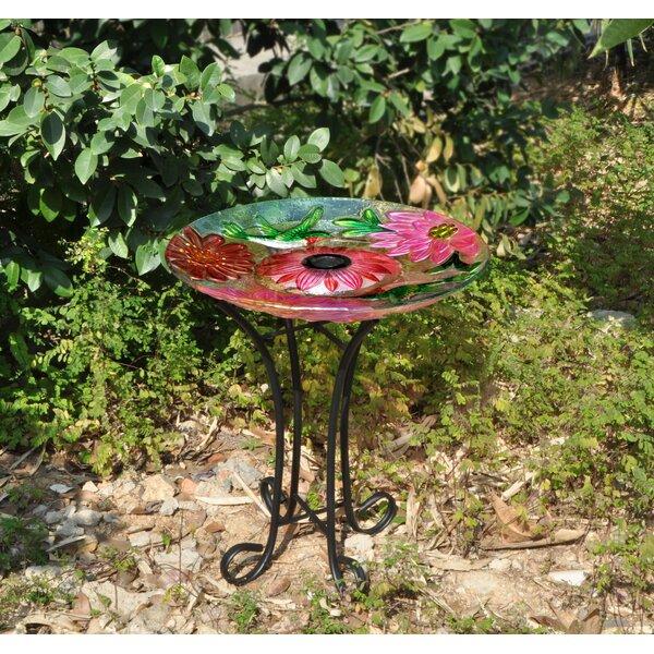 Floral Glass Hummingbird Solar Birdbath with Stand by Hi-Line Gift Ltd.